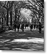 The Mall At Central Park Metal Print by Rob Hans