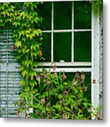 The Other Window Metal Print by Lisa  DiFruscio