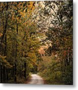 The Path Less Traveled 2 Metal Print by Jai Johnson
