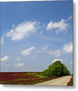 The Road Ahead Is Lined In Red Metal Print by Kathy Clark