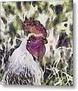 The Rooster Portrait Metal Print by Odon Czintos
