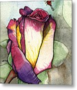 The Rose Metal Print by Nora Blansett