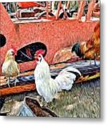 The Walk Of The Cock Metal Print by James Steele