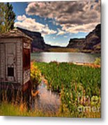 The Water Shed Metal Print by Tara Turner