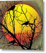 Three Blackbirds Metal Print by Bill Cannon