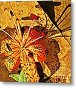 Tiger Lily Still Life  Metal Print by Chris Berry