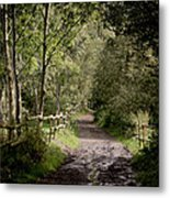 To The End Of September Metal Print by Odd Jeppesen