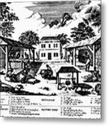 Tobacco Plantation, C1670 Metal Print by Granger