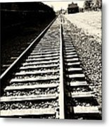 Tracks Of Our Ancestors Metal Print by Leslie Leda