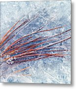 Trapped In Winter Metal Print by Mike  Dawson