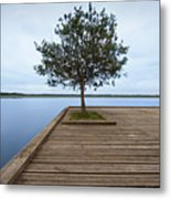 Tree On Jetty Metal Print by Billy Currie Photography