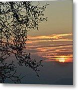 Tree Silhouette At Sunset Metal Print by Bruno Santoro