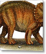 Triceratops Metal Print by Roger Hall and Photo Researchers