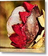 Tropical Mangosteen - Ready To Eat Metal Print by Kaye Menner
