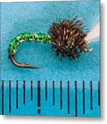 Trout Fly Suspender Buzzer Metal Print by Craig Lapsley