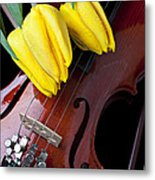 Tulips And Violin Metal Print by Garry Gay