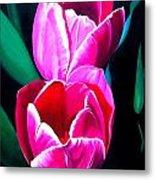 Tulips Metal Print by Karen Casciani