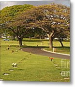 Two Trees Metal Print by Silvie Kendall