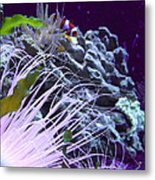 Undersea World Metal Print by Robin Hewitt