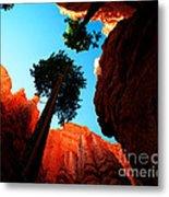 Utah - Navajo Loop 4 Metal Print by Terry Elniski
