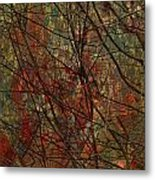 Vines And Twines  Metal Print by Jerry Cordeiro