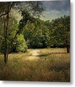 Wandering Path I Metal Print by Tamyra Ayles