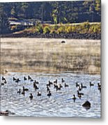 Water Fowl At Lake Wilhelmina Arkansas Metal Print by Douglas Barnard