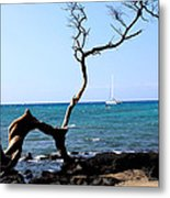 Water Sports In Hawaii Metal Print by Karen Nicholson