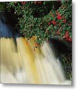 Waterfall And Fuschia, Ireland Metal Print by The Irish Image Collection