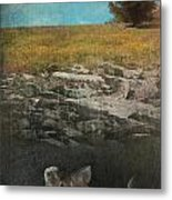 What Lies Below Metal Print by Laurie Search