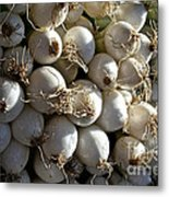 White Onions Metal Print by Susan Herber