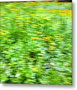 Wildflowers And Wind 2 Metal Print by Skip Nall
