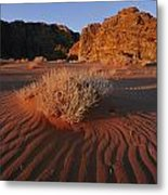 Wind Makes Waves In The Sand Metal Print by Annie Griffiths