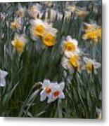 Wind Metal Print by Ron Smith