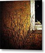 Windows Wink  Metal Print by Jerry Cordeiro