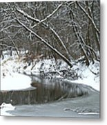 Winter In The Park Metal Print by Kay Novy