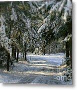 Winter's Tranquility Metal Print by Debra Straub