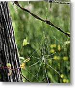 Wired Metal Print by JC Findley