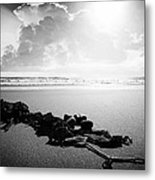 With Mother Metal Print by Jalai Lama