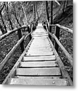 Wooden Stairs Metal Print by Falko Follert