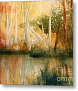 Yellow Medicine Creek 2 Metal Print by Julie Lueders