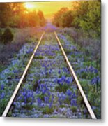 Blue Bonnets On Railroad Tracks Metal Print by Jeremy Woodhouse