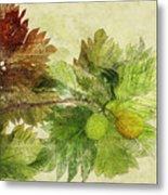 Breadfruit Metal Print by Kaypee Soh - Printscapes