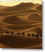 Camel Caravan In The Erg Chebbi Southern Morocco Metal Print by Ralph A  Ledergerber-Photography
