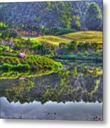 Color And Fog Metal Print by Robert Pearson