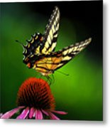 Dining Alone Metal Print by Lois Bryan