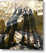 Friends Metal Print by Julie Niemela