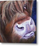 Highland Cow Metal Print by Fiona Jack