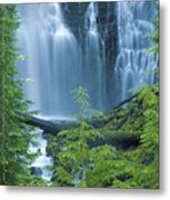 Lower Proxy Falls Metal Print by Greg Vaughn - Printscapes