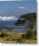 Mount Kilimanjaro Metal Print by Michele Burgess